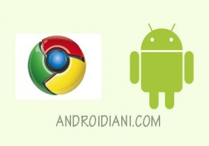 In Attesa Di Chrome Os , Android Per PC