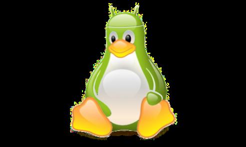 News | Kernel Android e Linux: si va avanti