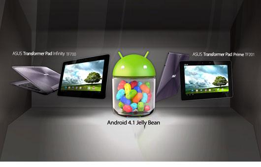 Asus rende disponibili per il download le ROM basate su Jelly Bean del Transformer Prime e Transformer Infinity